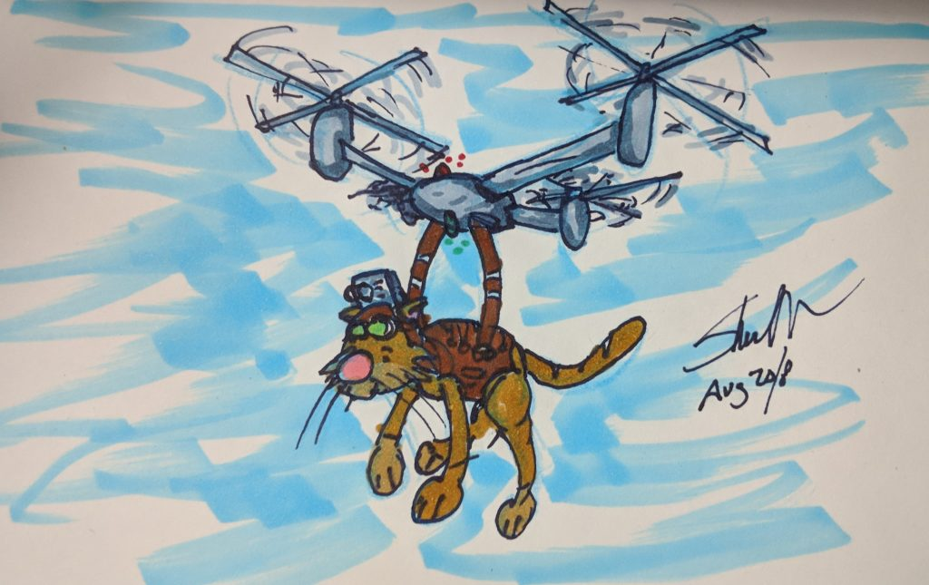 helicator drone with a cat doodle 2018